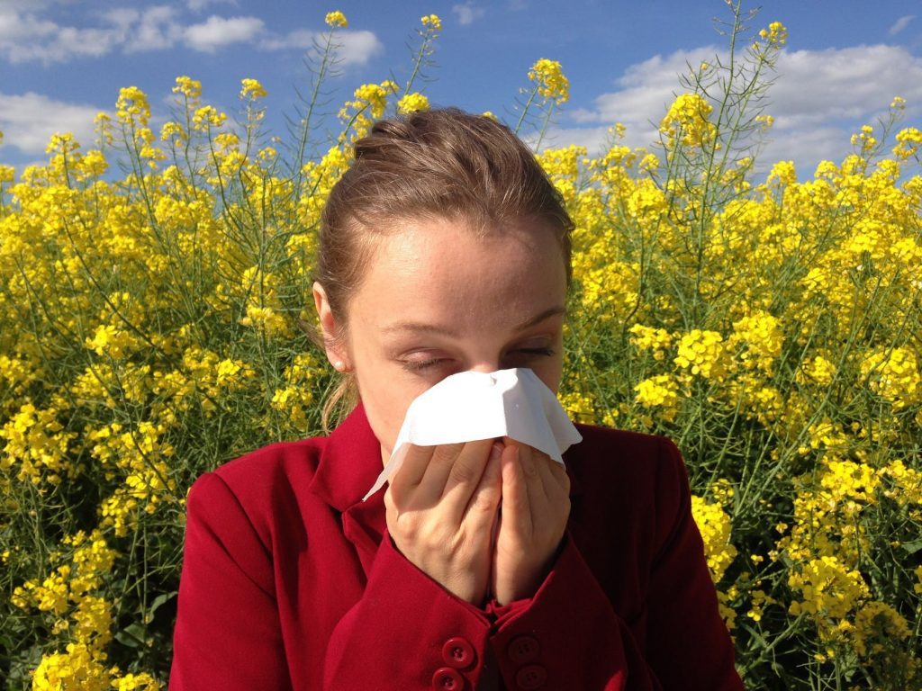 athsma - allergies - affections respiratoires - traitements et remèdes - thenaturalhealthdictionary.com