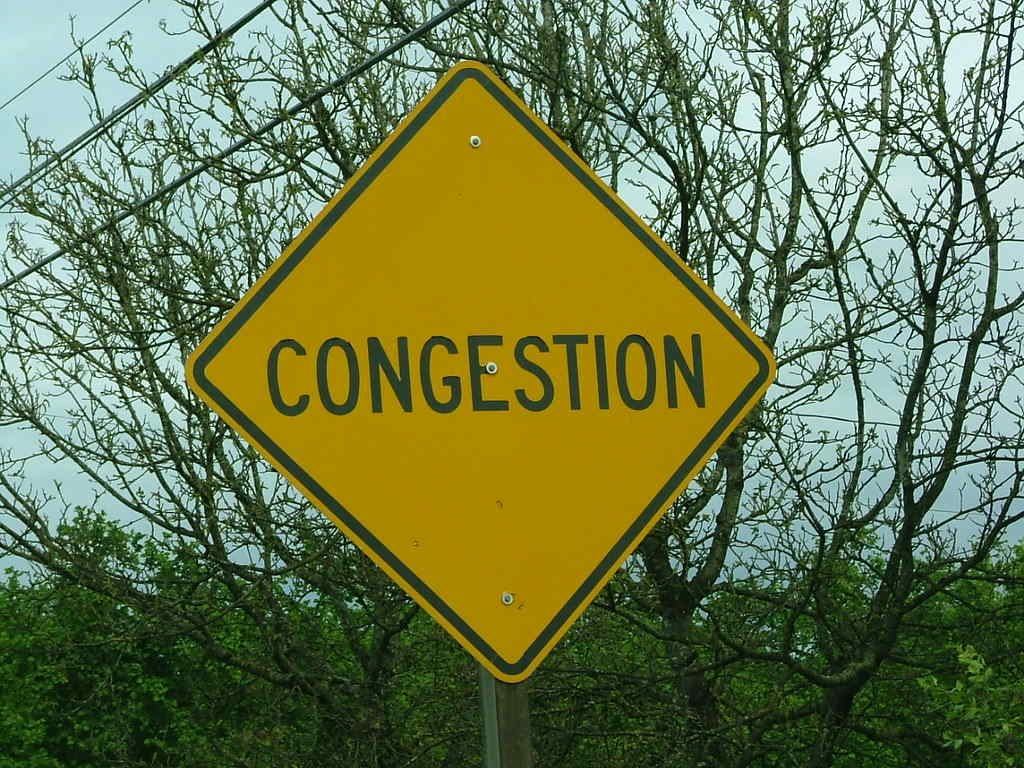 congestion - stuffy nose - thenaturalhealthdictionary.com - the natural health dictionary