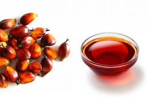 Palm Oil Is Another Healthy Oil